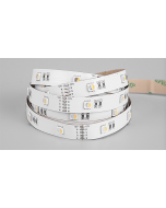 RGBW 4-in-1 SMD 5050 LED